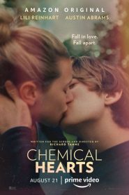 Chemical Hearts 2020