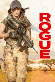 Rogue 2020