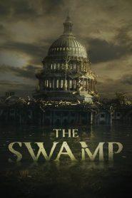 The Swamp 2020