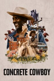 Városi cowboy 2020